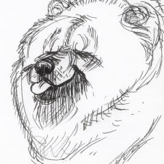 DoodleSoup129