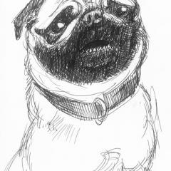 DoodleSoup131