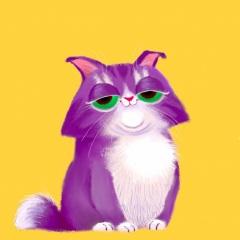 chat-mamie-sans-filtre