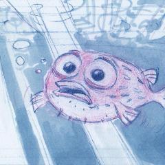 board_blowfish_case_P002a